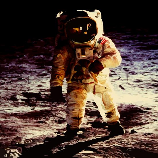 Sociální kosmonaut